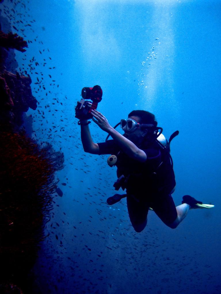 Diving in Koh Phi Phi